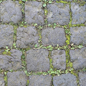 cobblestone surface with weeds growing in joints 300x300px
