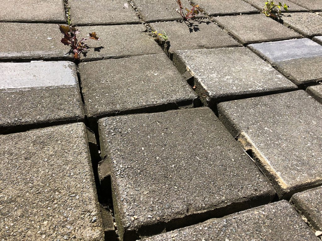 Without Consistent Maintenance Permeable Paving with weeds